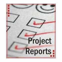project management in bangladesh term paper